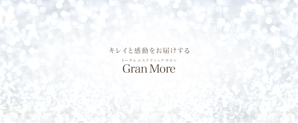 グランモアのメインビジュアル画像