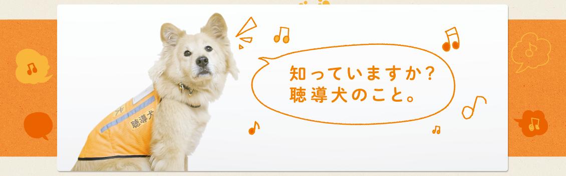 日本聴導犬推進協会のメインビジュアル画像